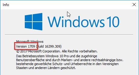 Die installierte Windows 10-Version wird angezeigt